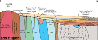 Generalised schematic geological cross-section across the northern flank of the Beacon Hill Pericline (click to enlarge view).
