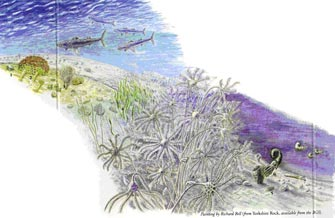 A reconstruction of the Early Carboniferous sea floor with crinoid 'gardens'