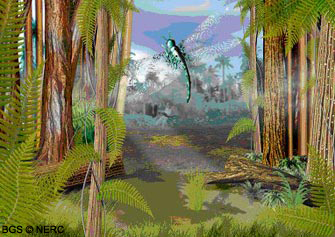Life in the Late Carboniferous