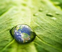 Photomontage of planet earth held in a droplet of water on a leaf ©iStockphoto.com/Florea Marius Catalin