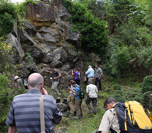 The group examining an outcrop at San Venanzo.