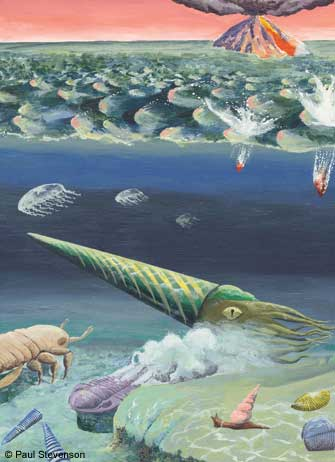 Life in the Silurian sea. Artwork � Paul Stevenson