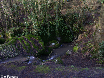 A stream sink, Stoke Lane Slocker, Stoke St Michael.