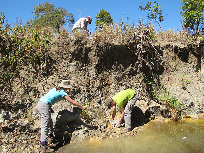 Sampling a weathered section in a stream valley. Copyright Kathryn Goodenough.