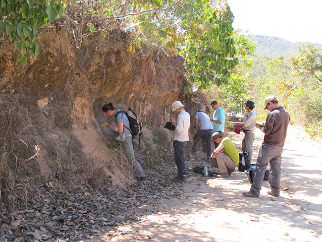 The team investigating saprolite in a road section. Copyright Kathryn Goodenough.