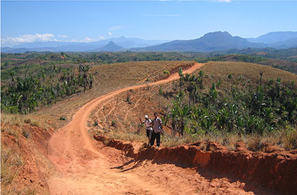 Laterites over alkaline rocks in north Madagascar represent a potential REE resource.